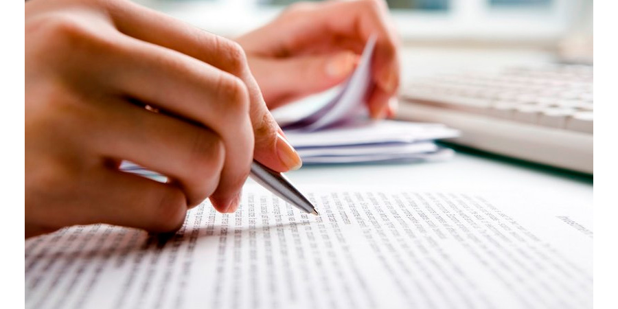 book review essay services